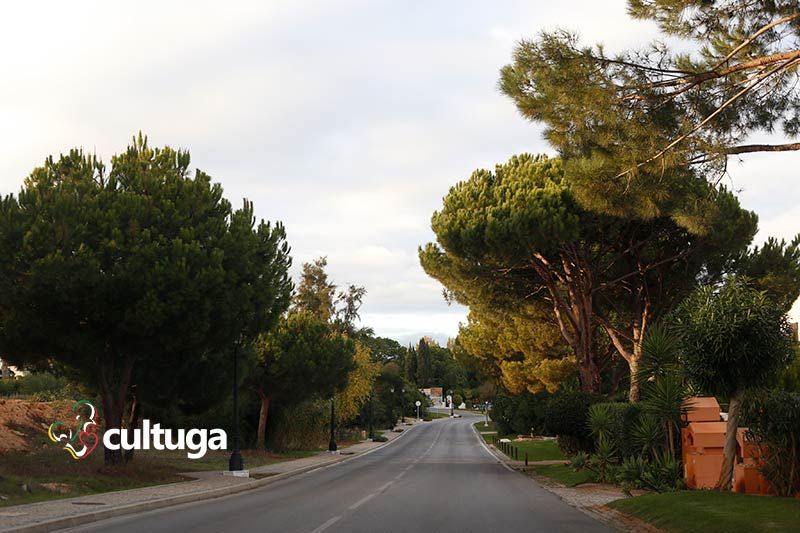 Avenida Ayrton Senna Algarve Portugal