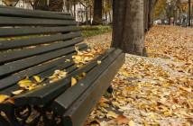 Outono na Av. da Liberdade, em Lisboa