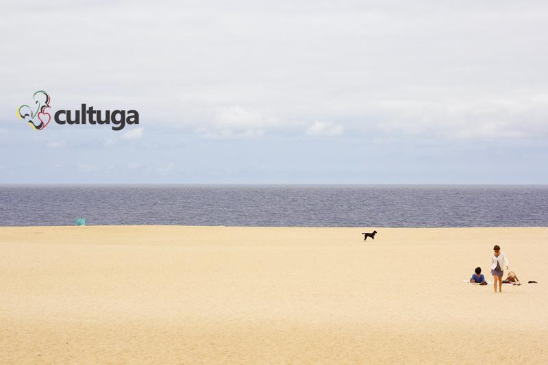 cachorro_nazare_portugal_cultuga_6