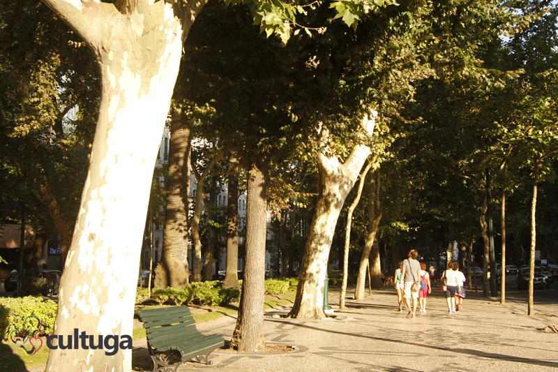 A Avenida da Liberdade, em Lisboa, no verão