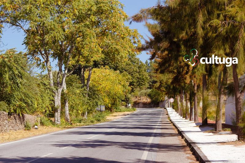 Estrada a caminho de Castelo de Vide: a Sintra do Alentejo - Portugal