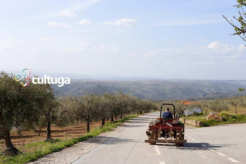 Castelos em Portugal: Castelo de Algoso - Trás-os-Montes