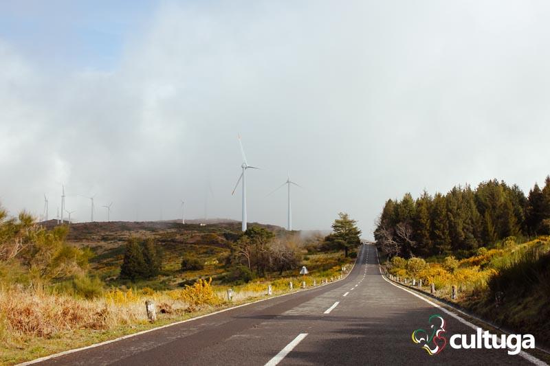 Estrada de Paul da Serra, na Ilha da Madeira - Portugal