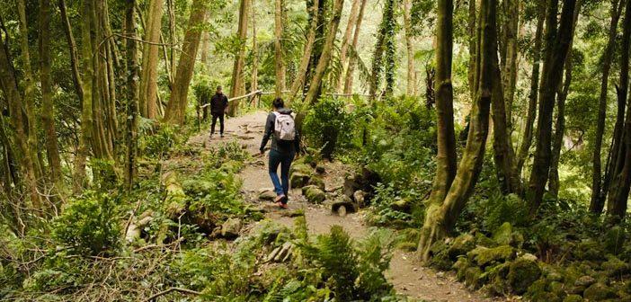 O que fazer na Ilha de São Miguel Açores