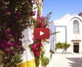 As flores da vila de Óbidos