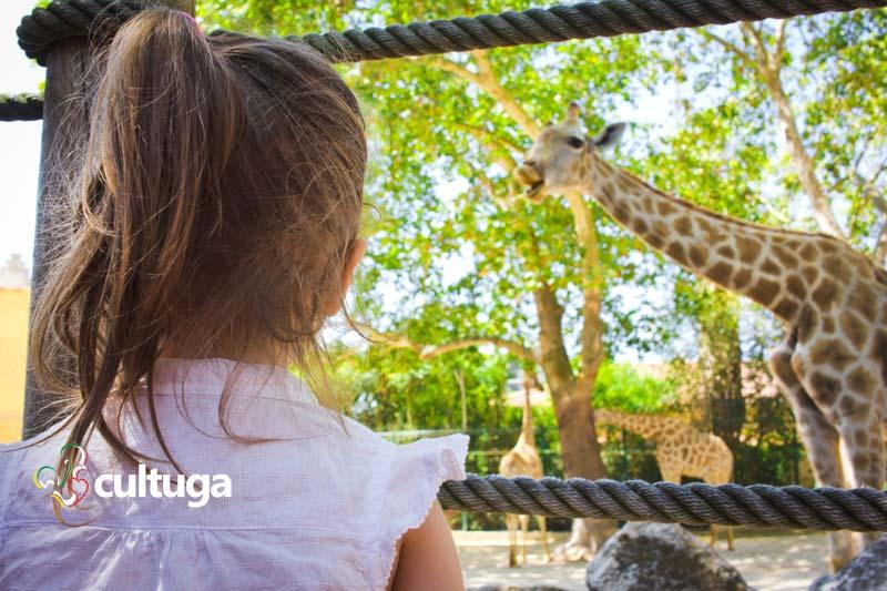 Lisboa com crianças: Zoológico