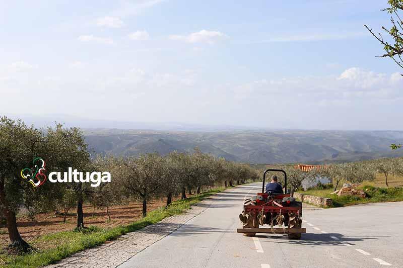 Trás os montes Portugal: Algoso