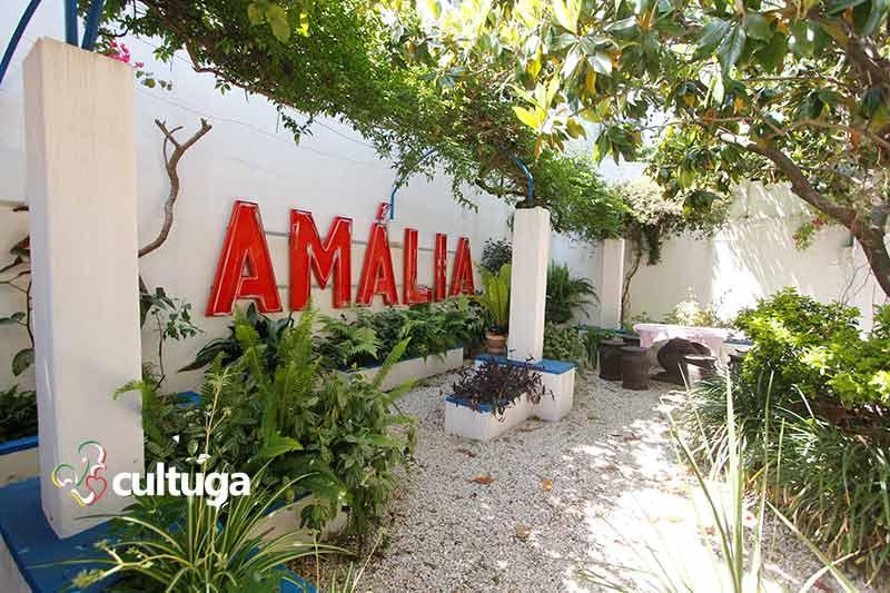 Jardim Casa Museu Amália Rodrigues