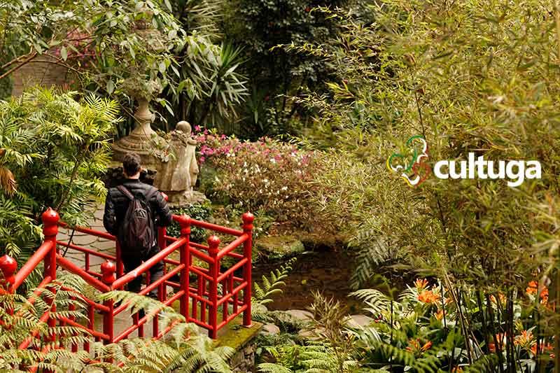 Jardim Tropical Monte Palace Ilha da Madeira